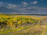 20120929_Alberta BC_0340.jpg