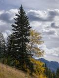 20121001_Alberta BC_0200.jpg