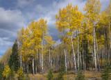 20121001_Alberta BC_0240.jpg