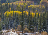 20121005_Sheep River_0056.jpg