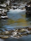 20121005_Sheep River_0230.jpg