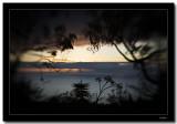 Lensbaby 3G, just a crazy lens