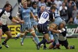CardiffBlues v leinster10.jpg