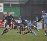 CardiffBlues v Ospreys11.jpg