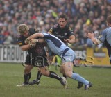 CardiffBlues v Ospreys15.jpg