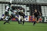 Ospreys v Leicester8.jpg