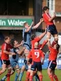 CardiffBlues v Munster24.jpg