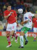 Wales v Bulgaria5.jpg