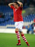 Wales v Bulgaria7.jpg