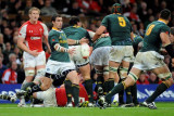 Wales v South Africa2.jpg