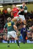 Wales v South Africa3.jpg