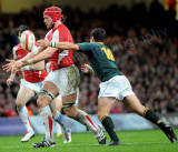 Wales v South Africa4.jpg