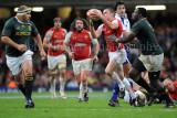 Wales v South Africa8.jpg