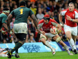 Wales v South Africa9.jpg