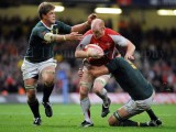 Wales v South Africa10.jpg