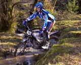 Cwm Woods9.jpg