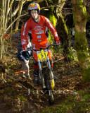 Cwm Woods13.jpg