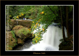 YN6Y14422-copy-b.jpg