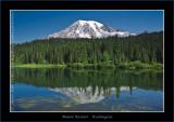 Wonderful Washington State