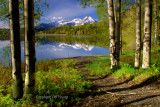 Spring color at the lake.jpg