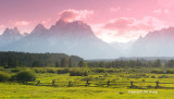 teton pano with fence and pink.jpg