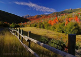 Fence and fall color.jpg