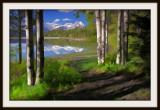 Silver Lake in Springtime.