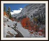 Autumn Trail.