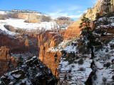 16 East Rim Trail in Winter