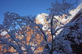 5 Snow silhouette