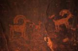 36  Petroglyphs
