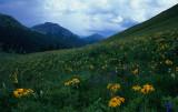 4  Maroon Bells Wilderness