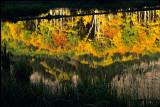 21 Owl Creek Pass