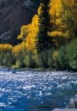 29 Rio Grande Headwaters