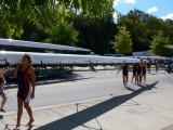 Rowing Races
