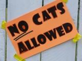 Freedom Farm Animal Sanctuary Pet Celebration
