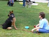 dogs 050 [1024x768].JPG