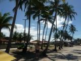 Ausflug zum Strand in  Gaibú     P1020297.JPG
