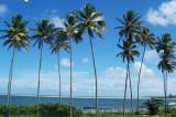 As Praias da  Ilha da Itamaracá  / Pernambuco 14.02.2008