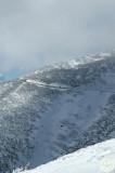 DSC_2363 Great Alpine Road near Mt Hotham Vic.jpg