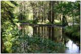 Lake Vyrnwy 1460