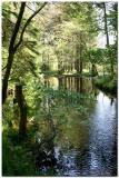 Lake Vyrnwy 1462