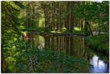 Lake Vyrnwy 1460 copy