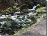Wales111006 copyjpg008.jpg