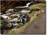 Wales113734 copyjpg023.jpg