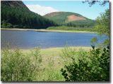 Wales650.jpg