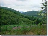 Wales277.jpg