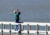 Taking pictures of Pelicans at Cedar Key, Florida
