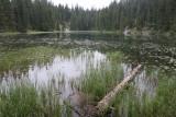 Zmijinje jezero