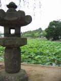 Stone Lantern, Shinobazu Pond, Ueno Park, Tokyo